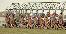 A 91. Magyar Derby versenynapjának tervezett programja
